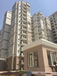 965 sqft, 2 bhk Apartment in Ramprastha The Atrium Sector 37D, Gurgaon at Rs. 13000