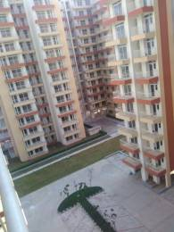 1707 sqft, 3 bhk Apartment in Builder Project Sector 77, Faridabad at Rs. 43.7500 Lacs