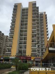 1250 sqft, 3 bhk Apartment in Panchsheel Hynish Sector 1 Noida Extension, Greater Noida at Rs. 11000