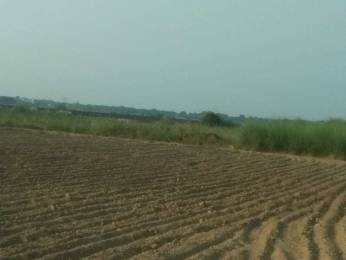 2700 sqft, Plot in Builder Project Main Tappal Road, Aligarh at Rs. 30.0000 Lacs