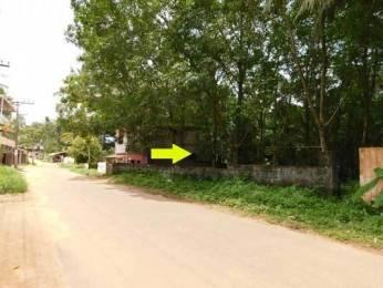 1839 sqft, Plot in Builder Project Kattakada Ottasekharamangalam Road, Trivandrum at Rs. 57.0000 Lacs