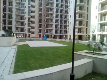 1455 sqft, 3 bhk Apartment in Skytech Matrott Sector 76, Noida at Rs. 66.9300 Lacs