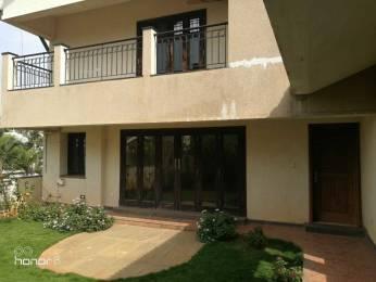 3500 sqft, 4 bhk BuilderFloor in Sobha Orchid Jakkur, Bangalore at Rs. 2.3900 Cr