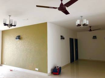 2580 sqft, 4 bhk Apartment in Puri VIP Floors Sector 81, Faridabad at Rs. 80.0000 Lacs