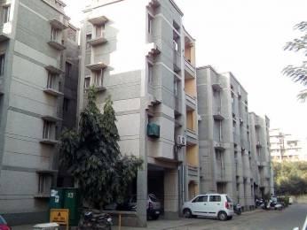1250 sqft, 3 bhk Apartment in Builder Kendriya Vihar Gurgaon Road, Gurgaon at Rs. 93.0000 Lacs