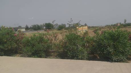 1125 sqft, Plot in Builder Project Tigri, Ghaziabad at Rs. 25.0000 Lacs