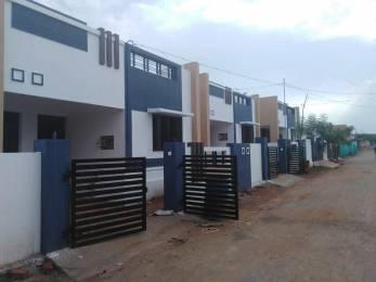 1200 sqft, 2 bhk Villa in Builder Project KTC Nagar, Tirunelveli at Rs. 18.0000 Lacs