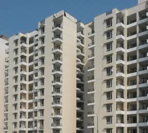 701 sqft, 1 bhk Apartment in SBP Southcity VIP Rd, Zirakpur at Rs. 21.9900 Lacs