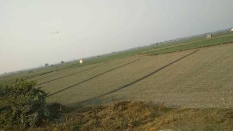 3375 sqft, Plot in Builder Project Tigri, Ghaziabad at Rs. 75.0000 Lacs