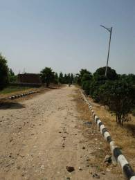 900 sqft, Plot in Builder sony enclave Bhago Majra, Mohali at Rs. 1.7760 Lacs
