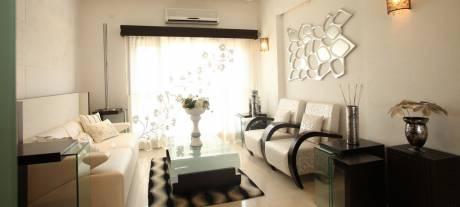1125 sqft, 2 bhk Apartment in Builder rps palm drive Sector 88 Faridabad, Faridabad at Rs. 34.0000 Lacs