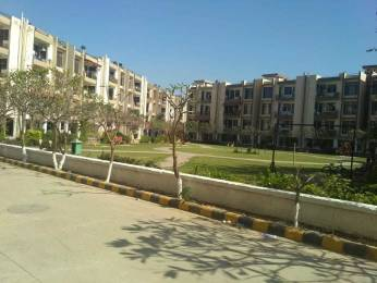 500 sqft, 1 bhk Apartment in SBP Homes Sector 126 Mohali, Mohali at Rs. 17.6200 Lacs