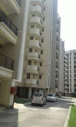 1125 sqft, 2 bhk Apartment in Parsvnath Regalia II Phase Raj Bagh, Ghaziabad at Rs. 48.0000 Lacs