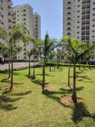 1221 sqft, 3 bhk Apartment in DLF Woodland Heights at My Town Jigani, Bangalore at Rs. 17000