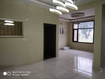 1170 sqft, 3 bhk BuilderFloor in Divine Divine Independent Floors Sector 115 Mohali, Mohali at Rs. 31.9000 Lacs