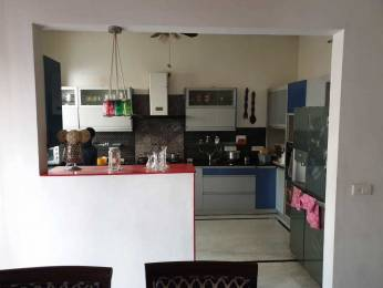 1800 sqft, 3 bhk IndependentHouse in Builder 8 MARLA BEAUTIFUL GROUND FLOOR Sector 78, Mohali at Rs. 85.0000 Lacs