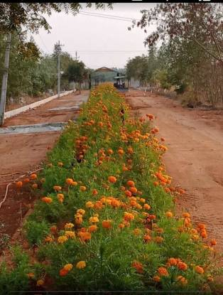 900 sqft, Plot in Builder Aler Warangala highway Warangal Highway Aler, Hyderabad at Rs. 4.0000 Lacs