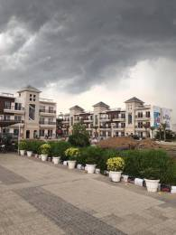 1755 sqft, 3 bhk Apartment in Future Casa Homes Sector 115 Mohali, Mohali at Rs. 45.0000 Lacs