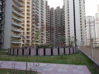 2096 sqft, 3 bhk Apartment in Unitech Habitat PI, Greater Noida at Rs. 45.0000 Lacs