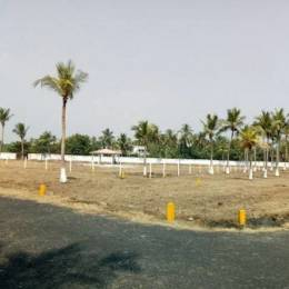 620 sqft, Plot in AM Lands And Property Developers Aurum Garden Thaiyur, Chennai at Rs. 13.5000 Lacs