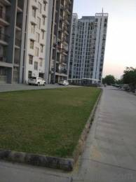 1325 sqft, 2 bhk Apartment in Ansal Celebrity Gardens Sultanpur Road, Lucknow at Rs. 50.0000 Lacs