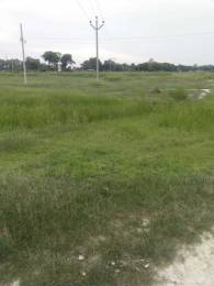 1980 sqft, Plot in ACL Green Valley Tappal, Aligarh at Rs. 13.2000 Lacs