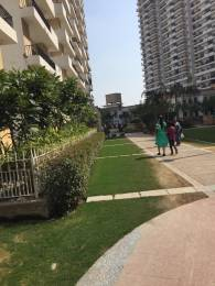1095 sqft, 2 bhk Apartment in Builder ROYALE NEST Noida Extn, Noida at Rs. 39.5000 Lacs