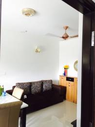 638 sqft, 1 bhk Apartment in Ahad Euphoria Sarjapur Road Post Railway Crossing, Bangalore at Rs. 64.0000 Lacs