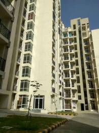 1325 sqft, 2 bhk Apartment in Ansal Celebrity Gardens Sultanpur Road, Lucknow at Rs. 43.5000 Lacs