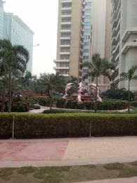 1950 sqft, 3 bhk Apartment in Purvanchal Royal Park Sector 137, Noida at Rs. 25000