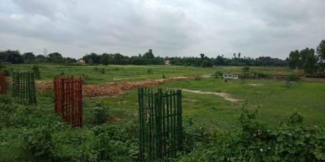 500 sqft, Plot in Builder Exel city Bihta, Patna at Rs. 2.0000 Lacs