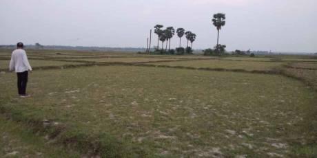13504 sqft, Plot in Builder Project Balia, Balasore at Rs. 18.6000 Lacs