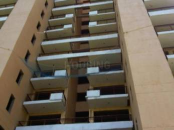 1578 sqft, 3 bhk Apartment in Tulip Violet Sector 69, Gurgaon at Rs. 1.0300 Cr