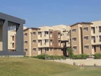 610 sqft, 1 bhk Apartment in Nebula Aavaas Changodar, Ahmedabad at Rs. 11.5000 Lacs