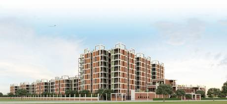 904 sqft, 2 bhk Apartment in Arete Our Homes 3 Sector 6 Sohna, Gurgaon at Rs. 22.9823 Lacs