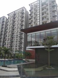 1559 sqft, 2 bhk BuilderFloor in Bhandari 7 Plumeria Drive Phase 1 Tathawade, Pune at Rs. 16000