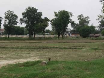 1630 sqft, Plot in Builder Residential Plots at the Prime Location Sultanpur Road, Lucknow at Rs. 24.4337 Lacs