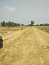 1000 sqft, Plot in Builder shree pitambara Naubasta, Kanpur at Rs. 7.7000 Lacs