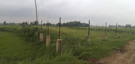 1800 sqft, Plot in Builder Exel city Chirora, Patna at Rs. 18.0000 Lacs