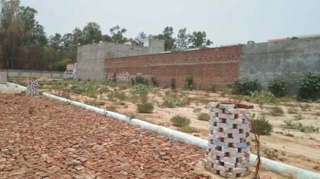 1000 sqft, Plot in Builder Advocate Colony Dhoomanganj, Allahabad at Rs. 12.5000 Lacs