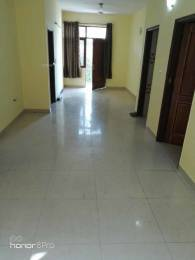 1500 sqft, 3 bhk Apartment in Builder Saket Block M Saket, Delhi at Rs. 42000