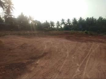 2178 sqft, Plot in Builder Project Vamanjoor, Mangalore at Rs. 22.5000 Lacs