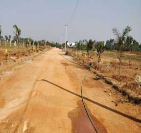 810 sqft, Plot in Builder Nandanavanam Subhaprada Tagarapuvalasa, Visakhapatnam at Rs. 11.0700 Lacs