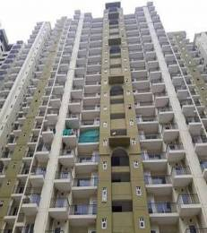 1245 sqft, 2 bhk Apartment in Ace Divino Sector 1 Noida Extension, Greater Noida at Rs. 43.9445 Lacs
