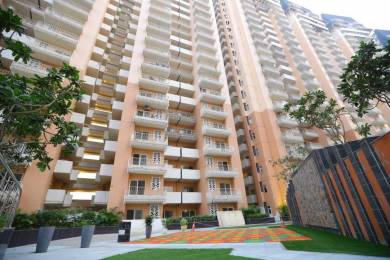 1150 sqft, 2 bhk Apartment in Ace Aspire Techzone 4, Greater Noida at Rs. 40.0000 Lacs