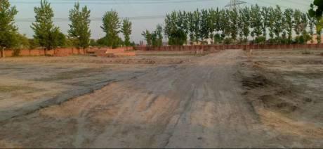 1260 sqft, Plot in Builder Om Ji Residency Sahupura Sahupura Road, Faridabad at Rs. 19.6000 Lacs