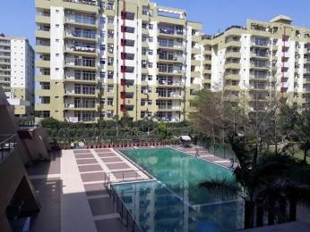 2300 sqft, 4 bhk Apartment in Builder Jalandhar Heights AGI Pholriwal 66 Feet Road, Jalandhar at Rs. 65.0000 Lacs