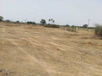 1980 sqft, Plot in Builder Center Park Amangal, Hyderabad at Rs. 11.0000 Lacs