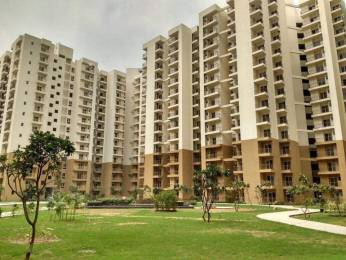 950 sqft, 2 bhk Apartment in Builder PARAMOUNT EMOTION Greater noida, Noida at Rs. 34.0000 Lacs
