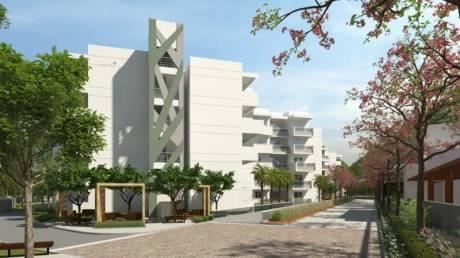 1165 sqft, 2 bhk Apartment in Builder Mana Tropicale rrt Sarjapur Road, Bangalore at Rs. 59.0000 Lacs